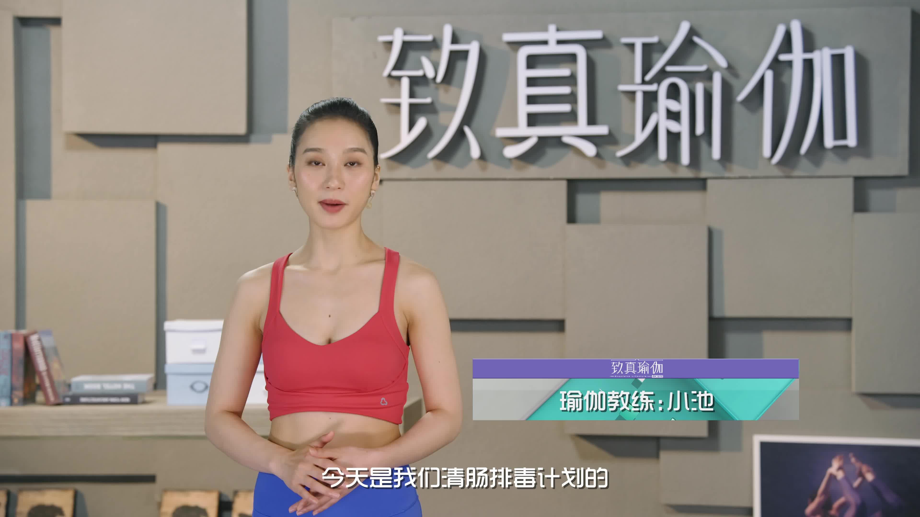致真瑜伽第10季 系列二十七清肠排毒计划 全身能量代谢
