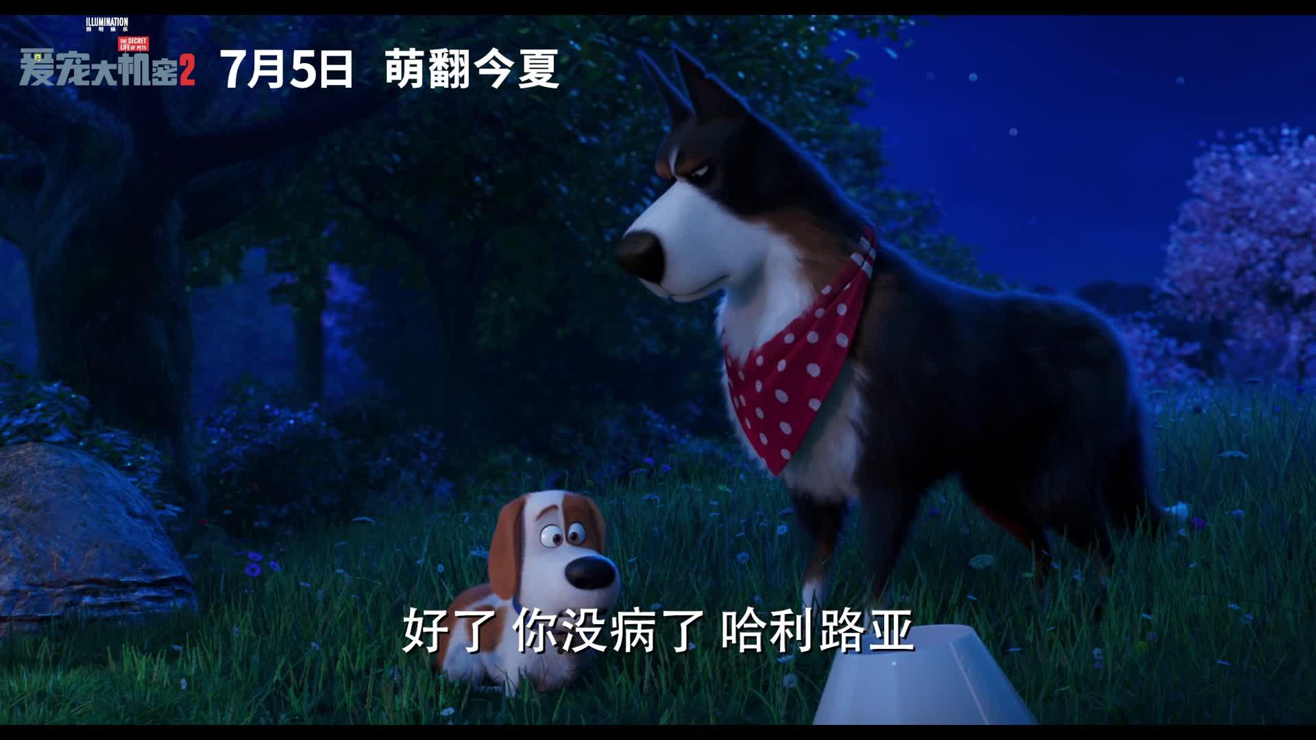 《爱宠大机密2》预告片