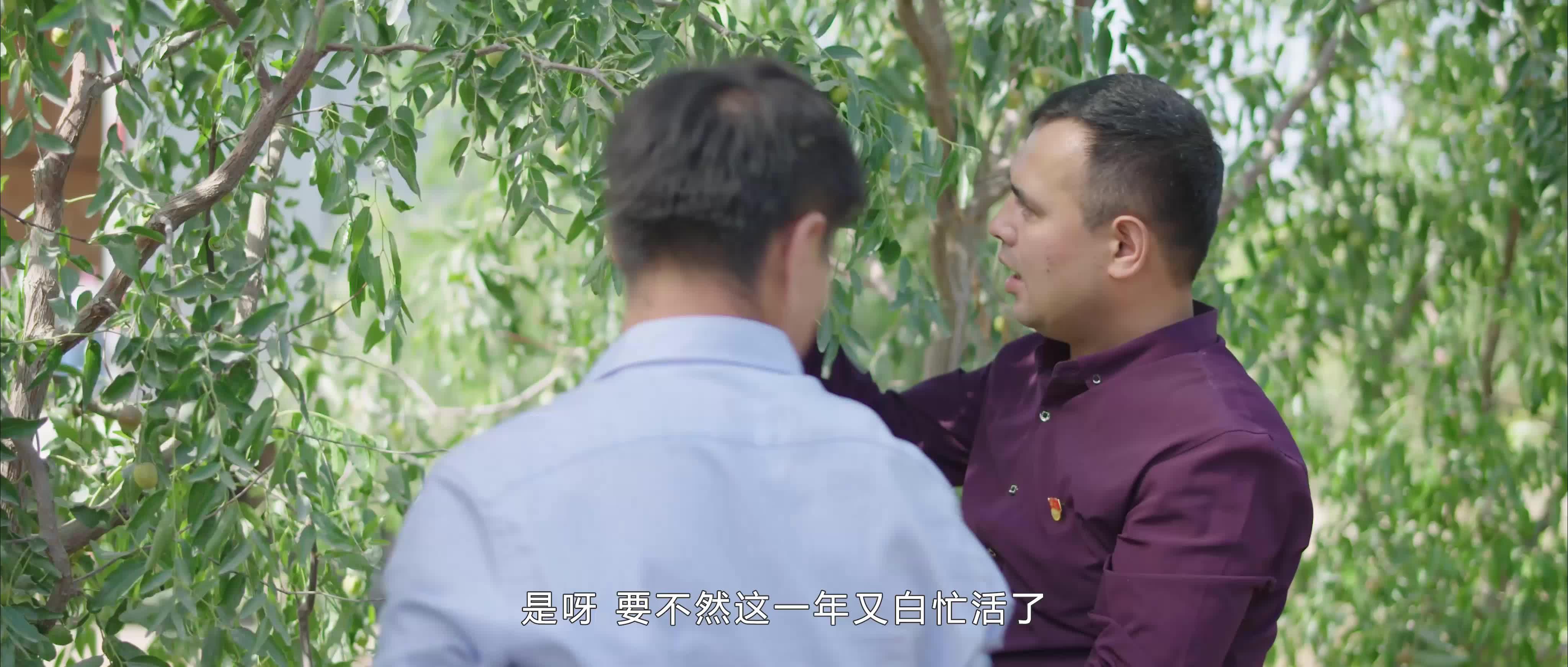 共筑中国梦 优选微电影《亲戚》