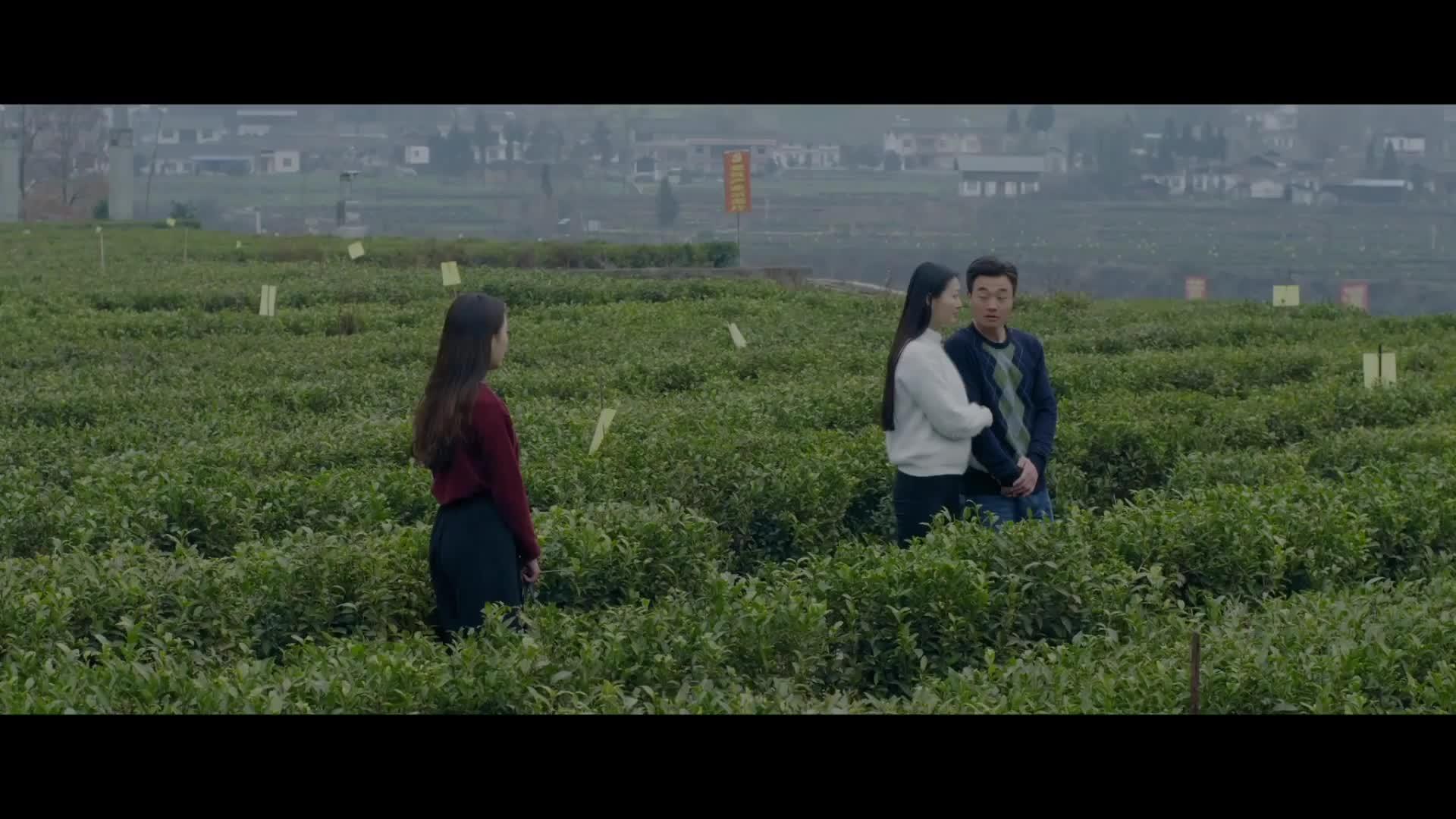 《县长当村官》预告片