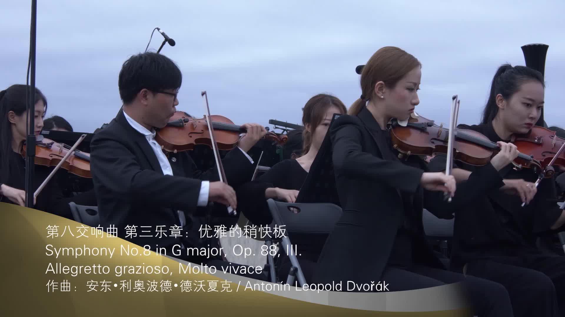 汉中问茶之第八交响曲 第三乐章:优雅的稍快板