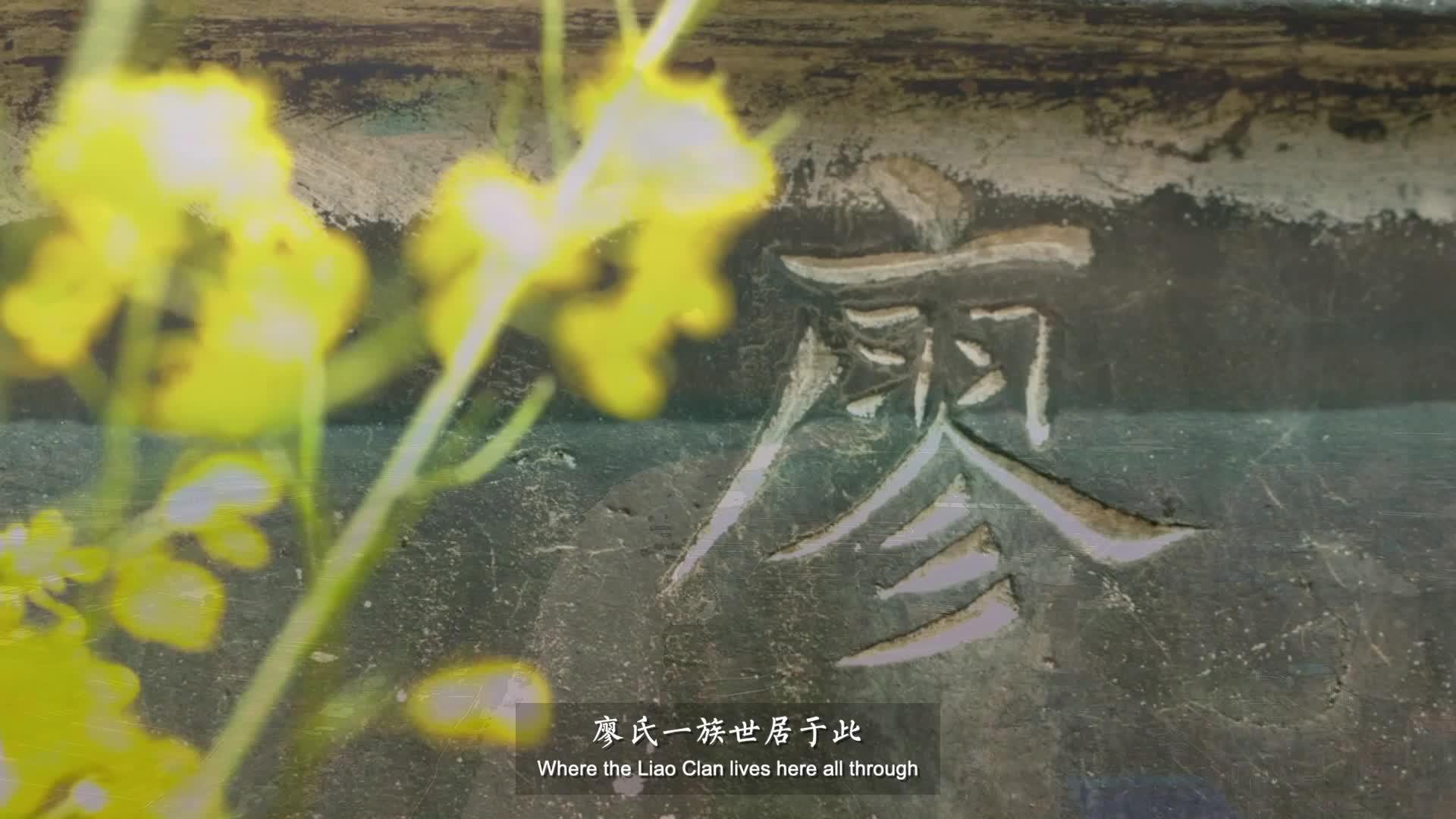 《情因家国——共和国历史中的廖氏》