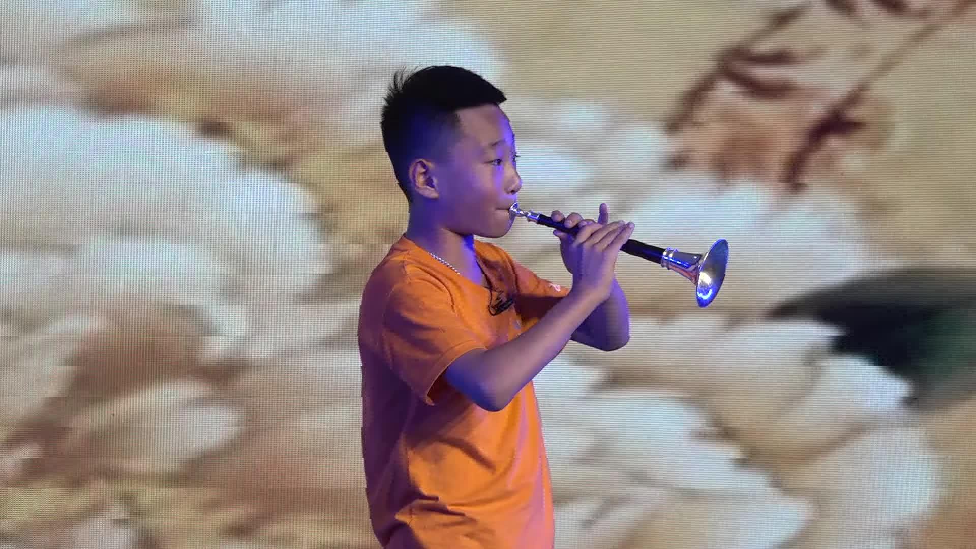 【书声】少年唢呐吹奏《百鸟朝凤》