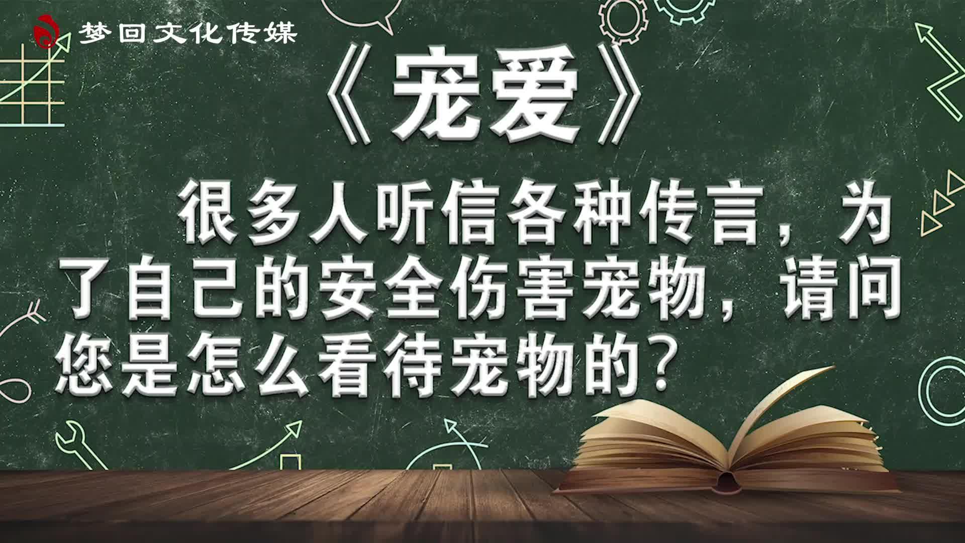 【赵老师的电影课】宠爱