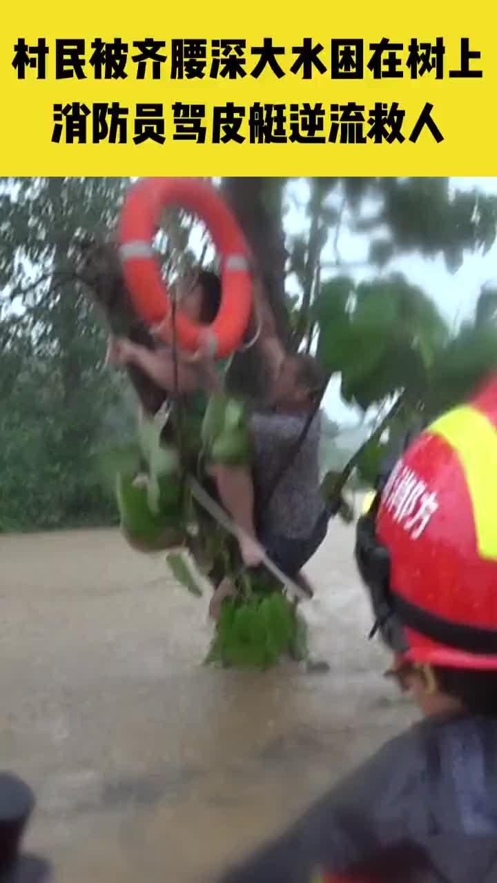 鹤壁:村民暴雨中被困树上 消防员驾皮艇逆流救人