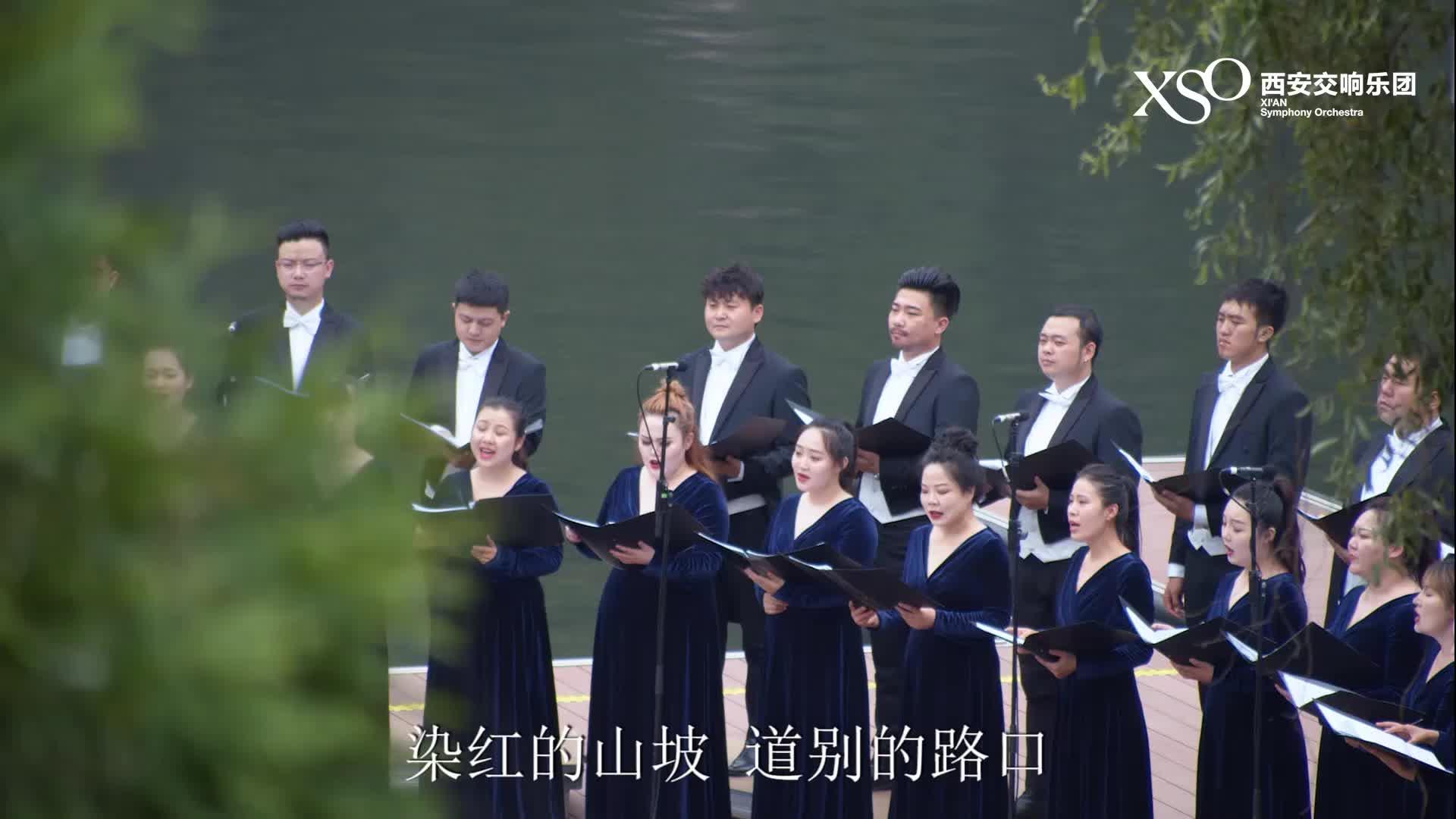 翠华山行音乐会——《凤凰花开的路口》