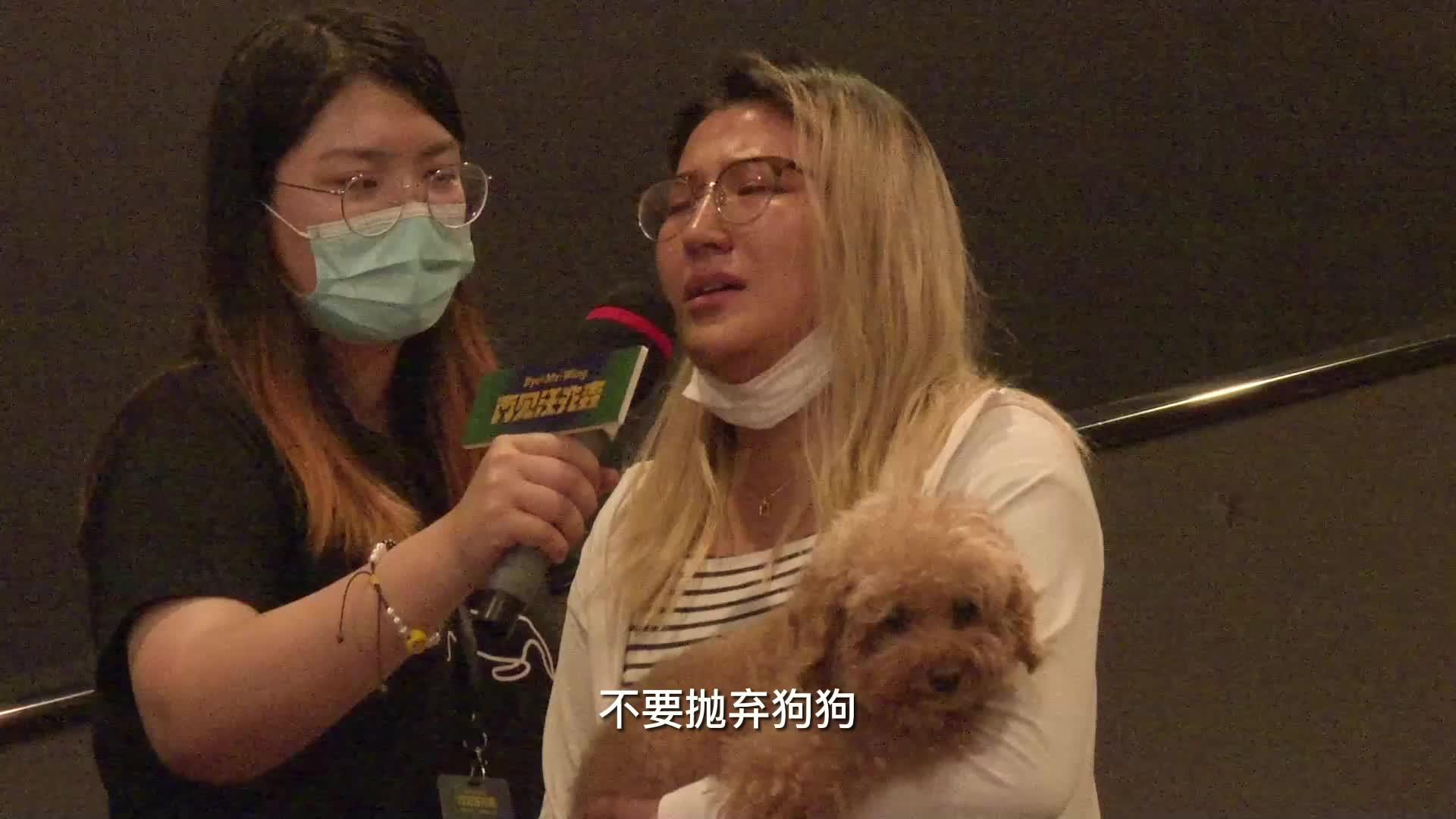 《再见汪先森》首映礼 观众讲述狗狗情缘