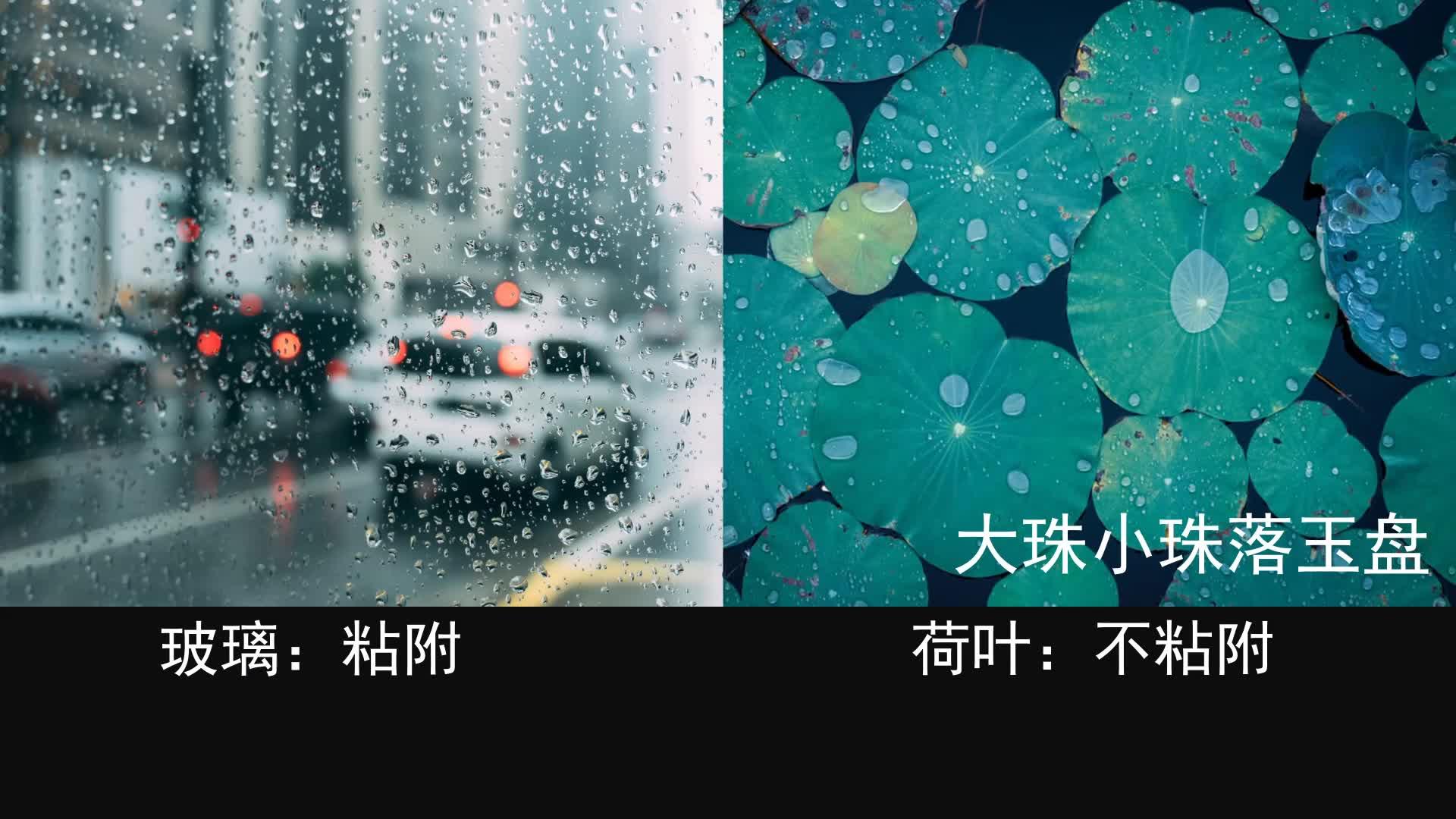 【CC讲坛-科技】李会增:未来,让每一滴水都能跳着芭蕾来发电