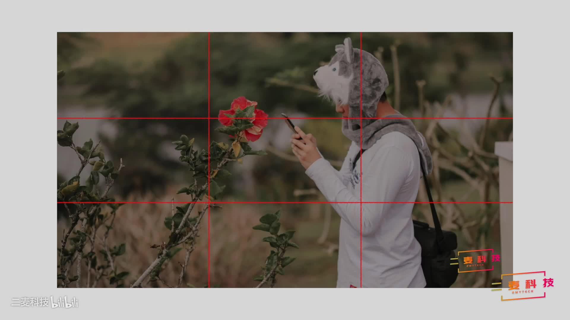 手机摄影|拿出手机拍照时,这五个技巧能助你拍出好作品