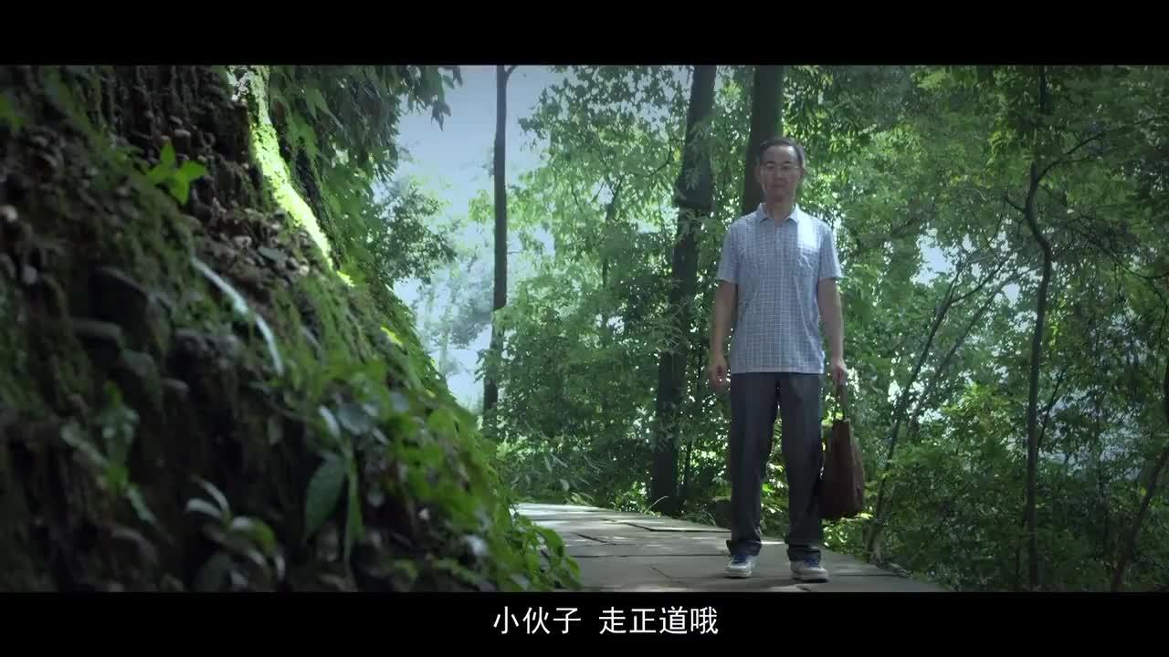廉政公益广告《世界上最难走的路是捷径》