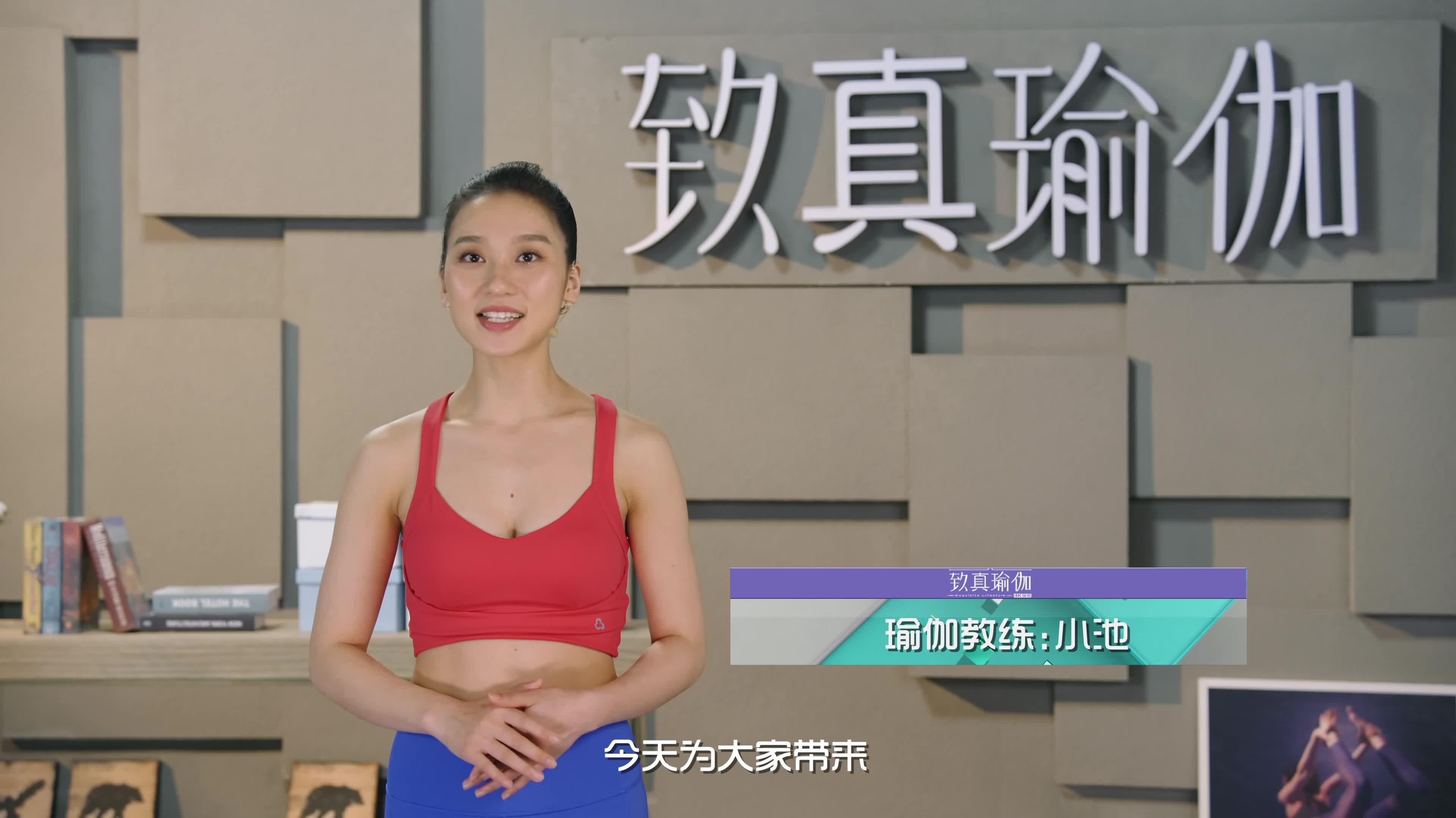 致真瑜伽第13季 系列三十五完美体质打造计划 灵活椎间盘