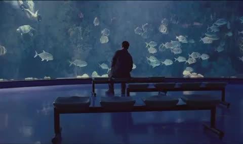 《海洋天堂》预告片