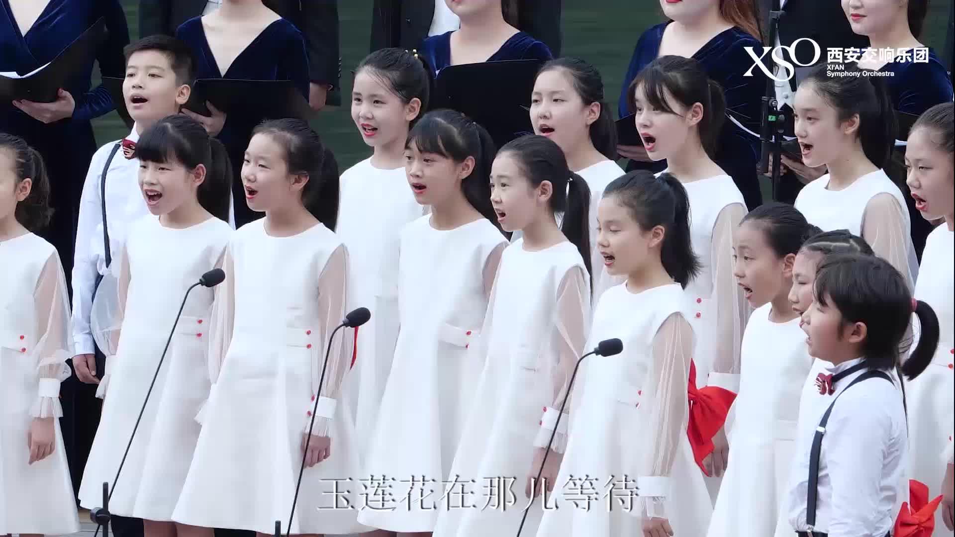 翠华山行音乐会——《乘着歌声的翅膀》