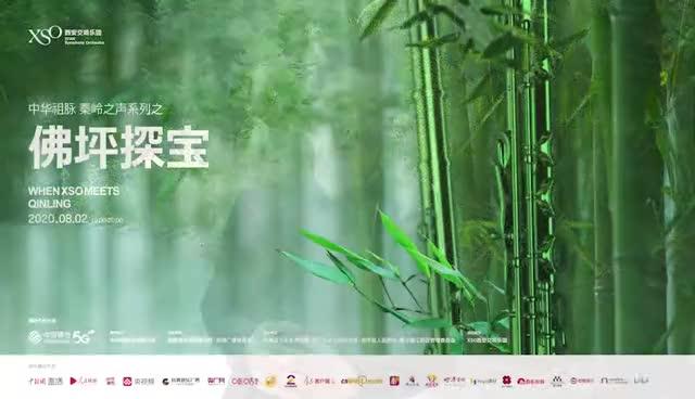 「中华祖脉·秦岭之声」之《佛坪探宝》先导片